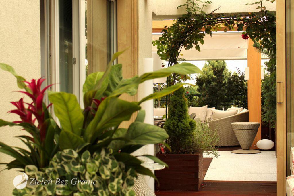 Eleganckie kompozycje roslinne pasują do stylu miejsca.